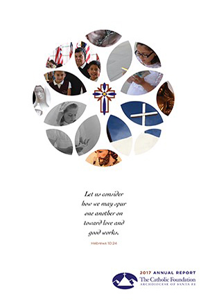 cover image for 2017 annual report